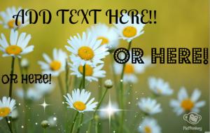 textongraphic