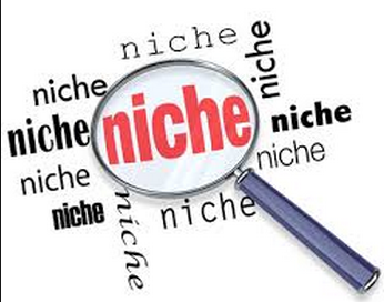 Niche Marketing Sites
