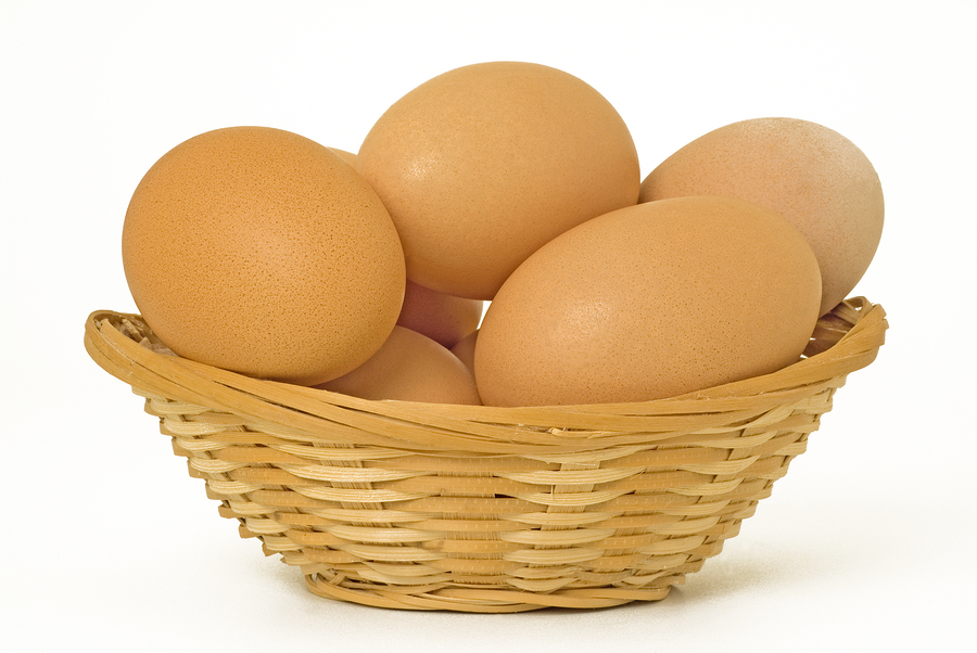 SEO - Eggs In One Basket