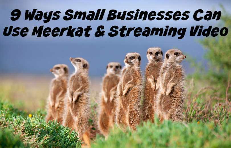 9 Ways Small Businesses Can Use Meerkat & Streaming Video